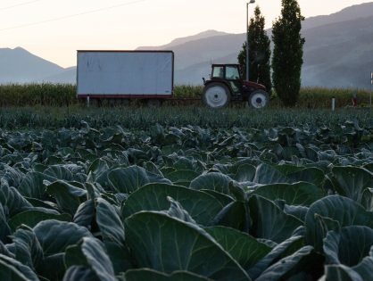 Über den Anbau: Integrierte Produktion